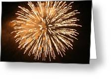 Fireworks In The Park 5 Greeting Card
