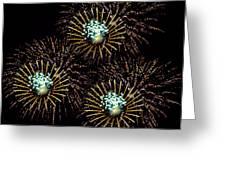 Fireworks - Yellow Spirals Greeting Card
