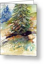 Firs On The Hill Greeting Card