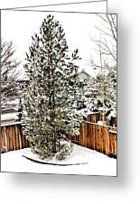 First Blanket Of Snow Greeting Card