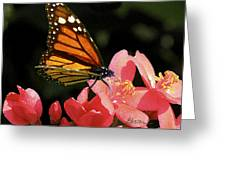 First Day Of Spring Greeting Card