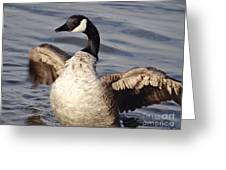 First Day Of Spring Goose Greeting Card