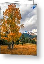 First Fall Colors In Rocky Mountain National Park Greeting Card