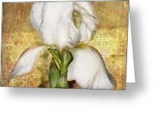 First Iris Greeting Card