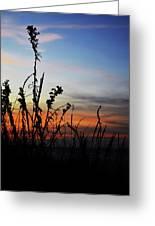 First Landing Sunset Greeting Card