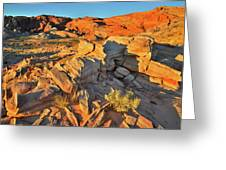 First Light On Valley Of Fire State Park Greeting Card