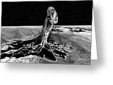 First Men On The Moon Greeting Card