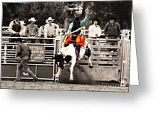 First Out Of The Chute Greeting Card
