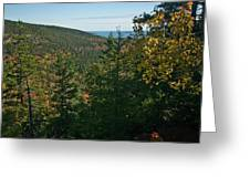 First Signs Of Fall Greeting Card