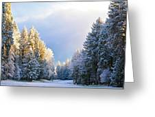 First Snow Fall  Greeting Card