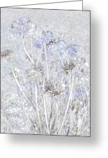 First Snow In The Field Greeting Card