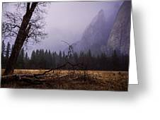 First Snow In Yosemite Valley Greeting Card by Priya Ghose