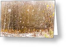 First Snow. Snow Flakes I Greeting Card