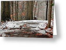 First Snowfall - A Walk In The Woods Greeting Card