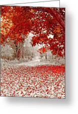 First Snowfall In Duluth Greeting Card