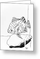 Fish And Rock Greeting Card