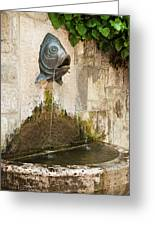 Fish Fountain Greeting Card