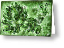 Fish In Green Mosaic 2 Greeting Card