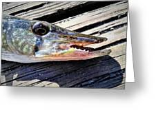 Fish Mouth Greeting Card
