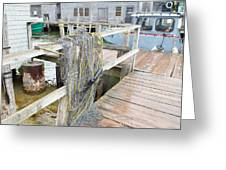 Fish Net Greeting Card