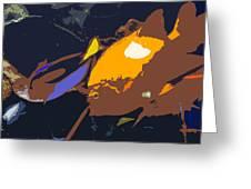 Fish Of The Tropics Greeting Card