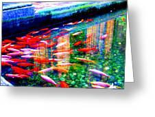 Fish Pond Greeting Card