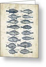 Fish Species Historiae Naturalis 08 - 1657 - 14 Greeting Card