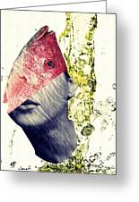Fishhead Greeting Card