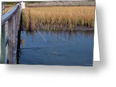 Fishin' Lines Greeting Card