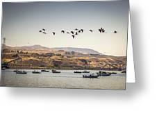 Fishing Boats And Blue Herons Greeting Card