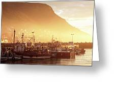 Fishing Boats At Dawn Kalk Bay South Africa Greeting Card