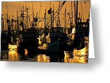 Fishing Boats Sunset Light Greeting Card