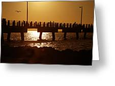 Fishing Off The Pier At Fort De Soto At Dusk Greeting Card
