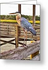 Fishing On The Pier  Greeting Card