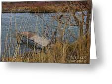 Fishing Platform  Greeting Card