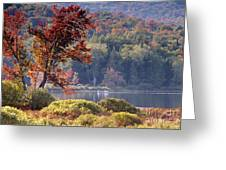 Fishing The Adirondacks Greeting Card
