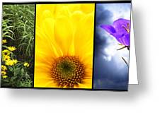 Five Flower Composite Greeting Card
