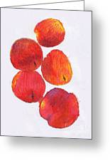 Five Nectarines  Greeting Card