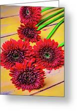 Five Red Dasies Greeting Card