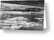 Fjallsarlon Glacier Lagoon Iceland 2348 Greeting Card