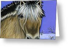 Fjord Pony Greeting Card