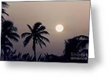 Floridian Sunrise Greeting Card