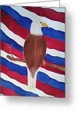 Flag And Eagle Greeting Card