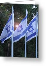 Flags Of Israel Blowing In The Wind Greeting Card
