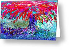 Flamboyan Greeting Card
