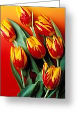 Flame Tulips Greeting Card by Garry Gay