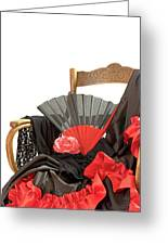 Flamenco Clothing  Greeting Card