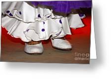 Flamenco Steps Greeting Card