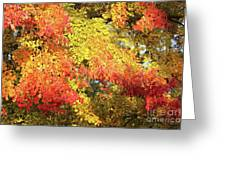 Flaming Autumn Leaves Art Greeting Card
