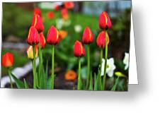 Flaming Flowers  Greeting Card